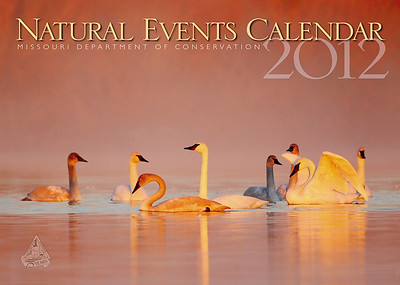 Magazine/Calendar Covers